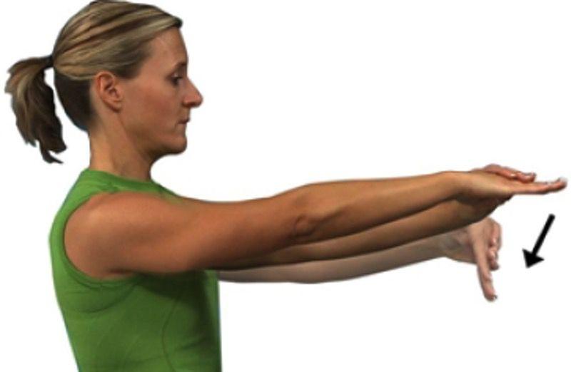 Wrist Extensors Stretch