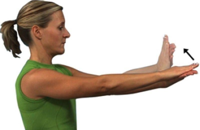 Wrist Flexors Stretch